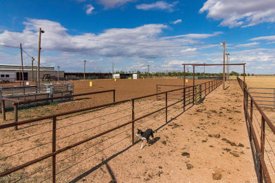 Residential Lots & Land For Sale: Plainview Equestrian Center
