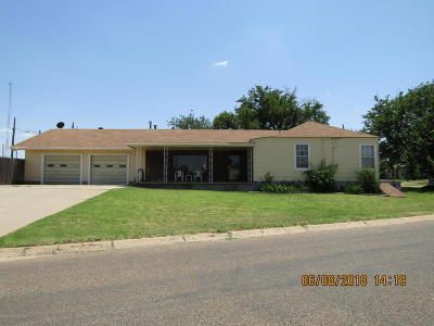 Borger Single Family Home For Sale: 1038 Hedgecoke Dr