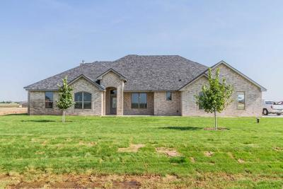 Canyon Single Family Home For Sale: 20480 Firefly Ln