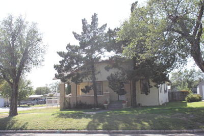 Carson County Single Family Home For Sale: 501 Park Ave