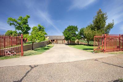 Amarillo Single Family Home For Sale: 606 Michael Ln