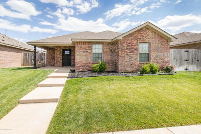 Amarillo Single Family Home For Sale: 9613 Perry Avenue
