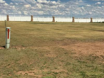 Amarillo Residential Lots & Land For Sale: 9051&9101 Bridle Trails Dr