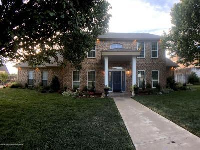 Borger Single Family Home For Sale: 206 Loma Linda Ln