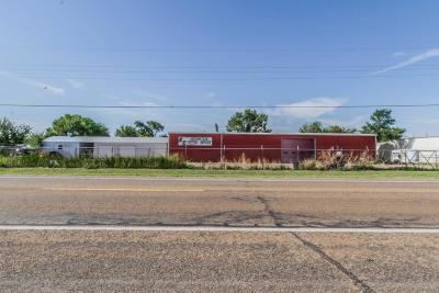 Armstrong County, Randall County Commercial For Sale: 2764 Fm 1151 (Claude)
