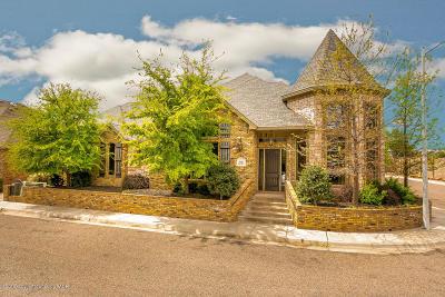 Potter County, Randall County Single Family Home For Sale: 5122 Olsen Cir