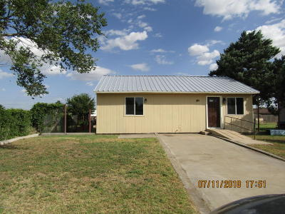Borger Single Family Home For Sale: 105 Amaryllis St