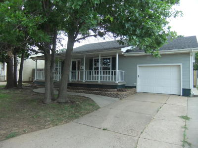 Borger Single Family Home For Sale: 206 Union St