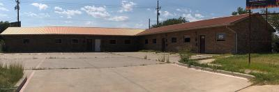 Potter County Commercial For Sale: 211 Buchanan N St