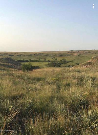 Canyon Residential Lots & Land For Sale: 13200 Bluff Ridge Trl