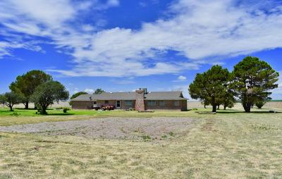 Hereford Single Family Home For Sale: 5496 N Hwy 385