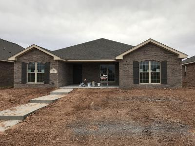 Amarillo Single Family Home For Sale: 9601 Kori Dr
