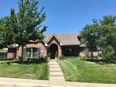 Potter County Single Family Home For Sale: 3107 River Birch Pl