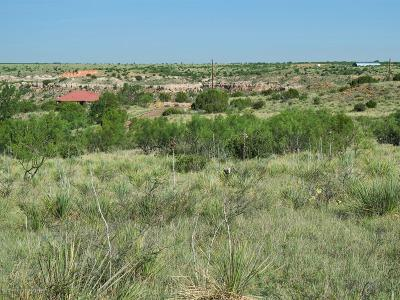 Amarillo Residential Lots & Land For Sale: Palomino
