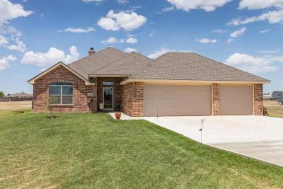 Potter County Single Family Home For Sale: 18950 19th St