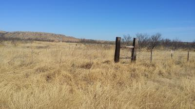 Amarillo Residential Lots & Land For Sale: Horseshoe Ln