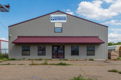 Armstrong County, Randall County Commercial For Sale: 6315 Canyon Dr