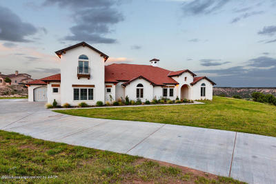 Amarillo Single Family Home For Sale: 15351 Canyon Pass Rd