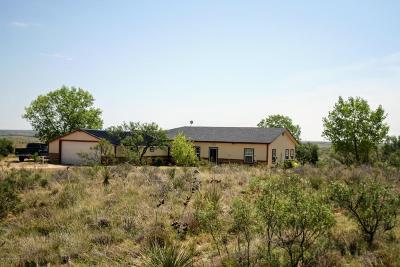 Amarillo Single Family Home For Sale: 17000 Park Cir E