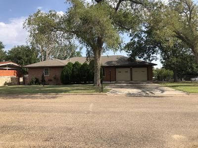 Borger Single Family Home For Sale: 219 Teague St