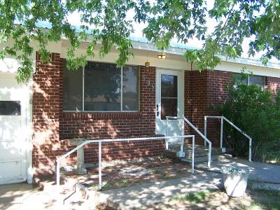 Fritch Single Family Home For Sale: 507 S Hoyne Ave