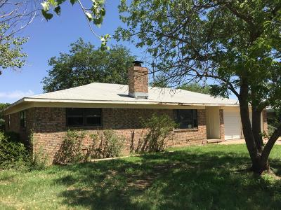 Amarillo Single Family Home For Sale: 229 Sagebrush Ave