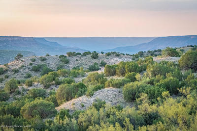 Canyon Residential Lots & Land For Sale: Spanish Skirts Tract 4