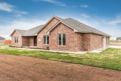 Amarillo Single Family Home For Sale: 9551 Yesterday W Ln