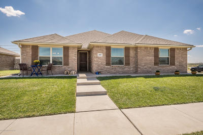 Amarillo Single Family Home For Sale: 2807 Ries Ln