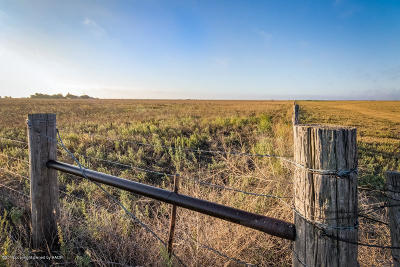 Happy Residential Lots & Land For Sale: Fm 1705 40 Acres