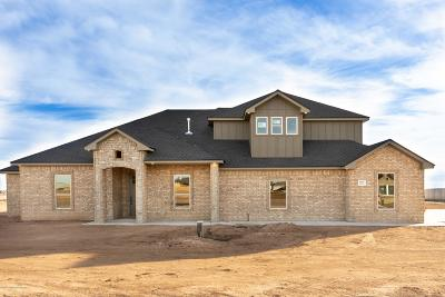 Amarillo Single Family Home For Sale: 9625 Help W Ln