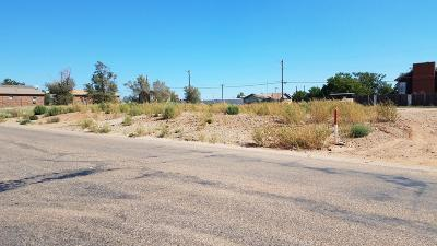Borger Residential Lots & Land For Sale: 308b McGee N St