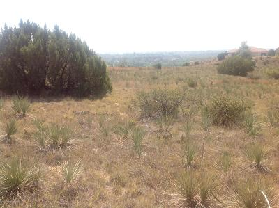 Amarillo Residential Lots & Land For Sale: Wild Plum