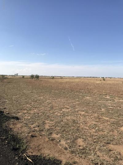 Amarillo Residential Lots & Land For Sale: 1461 Katie Ln
