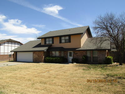 Borger Single Family Home For Sale: 623 Skyline Dr