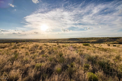 Amarillo Residential Lots & Land For Sale: Outabounds Ranch