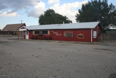 Commercial For Sale: 503 McMasters S St
