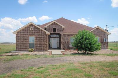Amarillo Single Family Home For Sale: 1311 Wheeler Rd