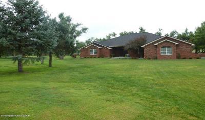 Borger Single Family Home For Sale: 3 Quail Hollow