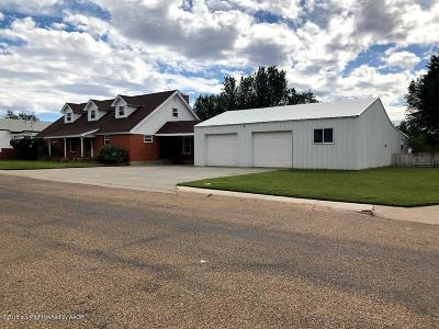 Borger Single Family Home For Sale: 1307 Potter St