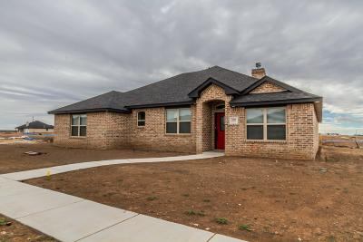 Amarillo Single Family Home For Sale: 2809 Bismarck Ave