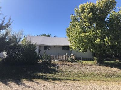Fritch Single Family Home For Sale: 134 Apache Trl