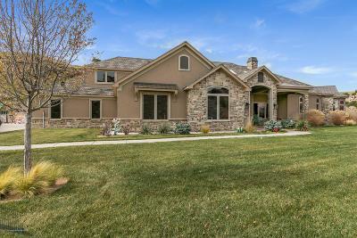 Amarillo Single Family Home For Sale: 107 Bayshore Dr