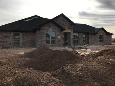 Amarillo Single Family Home For Sale: 9801 Help Ln