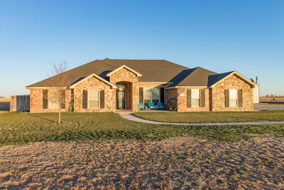 Amarillo Single Family Home For Sale: 15151 Dowell Rd