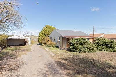 Potter County Single Family Home For Sale: 168 Cliffside Dr