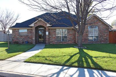 Potter County, Randall County Single Family Home For Sale: 6705 Daniel Dr