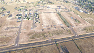 Armstrong County, Randall County Commercial For Sale: Hollywood