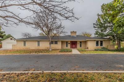 Potter County Single Family Home For Sale: 109 Palomino S St