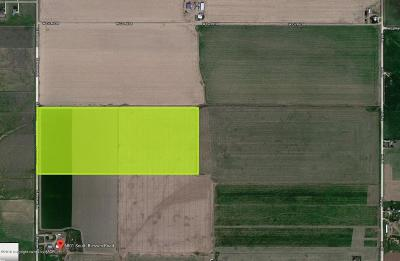 Residential Lots & Land For Sale: 6800 S Blessen Rd